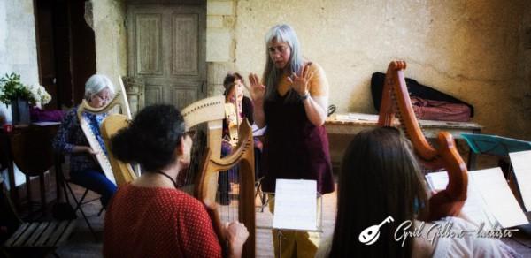 <titrephoto>photos</titrephoto> : stage de harpes anciennes à l'abbaye de Tuffé organisé par <em>À Plaisir</em>