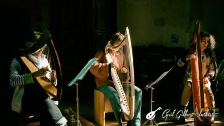 <titrephoto>photos</titrephoto> : stage de harpes anciennes organisé par l'association <em>À Plaisir</em> (coord. Cyril Gilbert), encadré par Carole Dessoubrais.